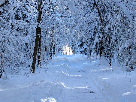 snow-1651105__340.jpg